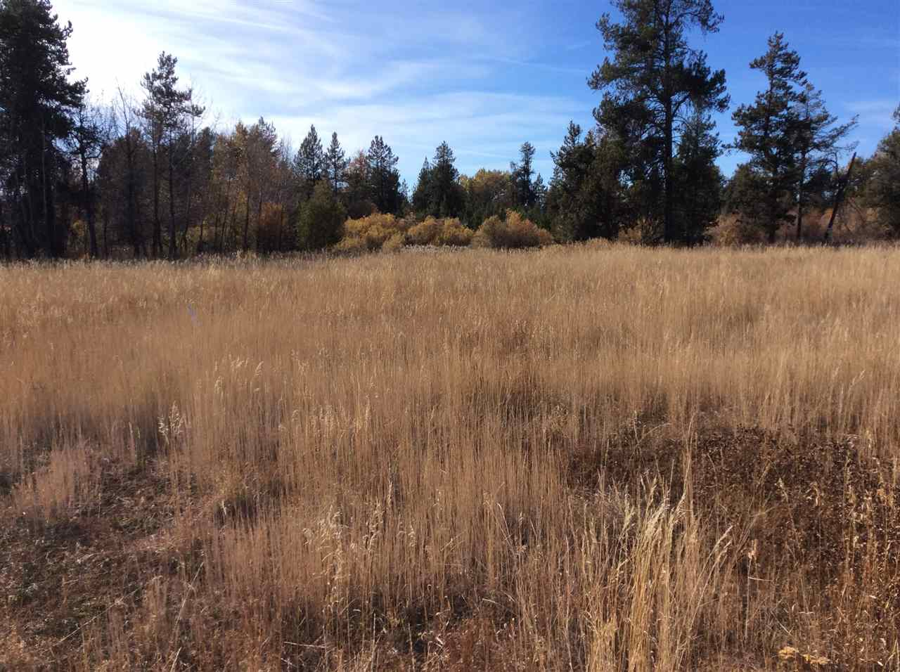 209 West Jug Road- McCall- Idaho 83638, Land For Sale, Price $103,000, 98673779
