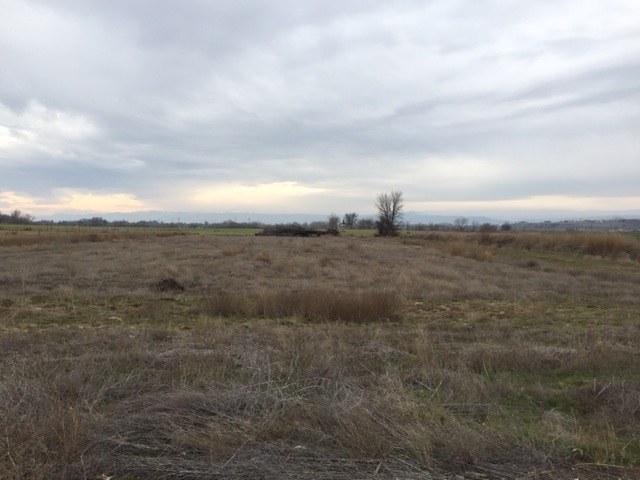TBD Boehner Rd., Wilder, Idaho 83676, Land For Sale, Price $219,900, 98674852