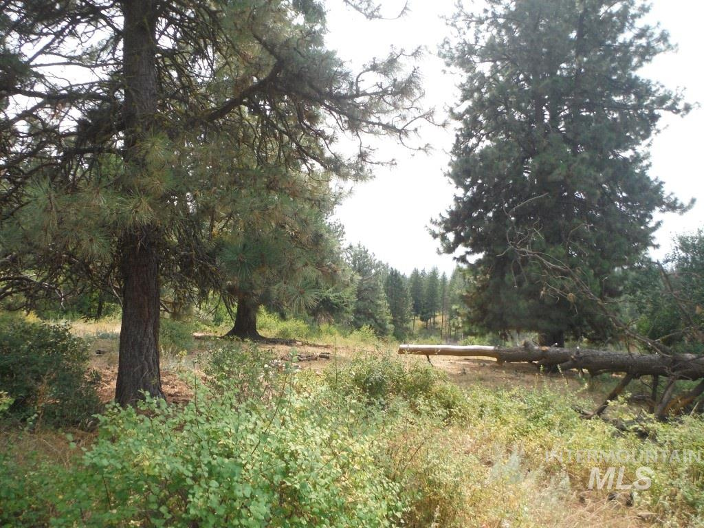 62 Little Fall Creek, Council, Idaho 83612, Land For Sale, Price $340,000, 98682703