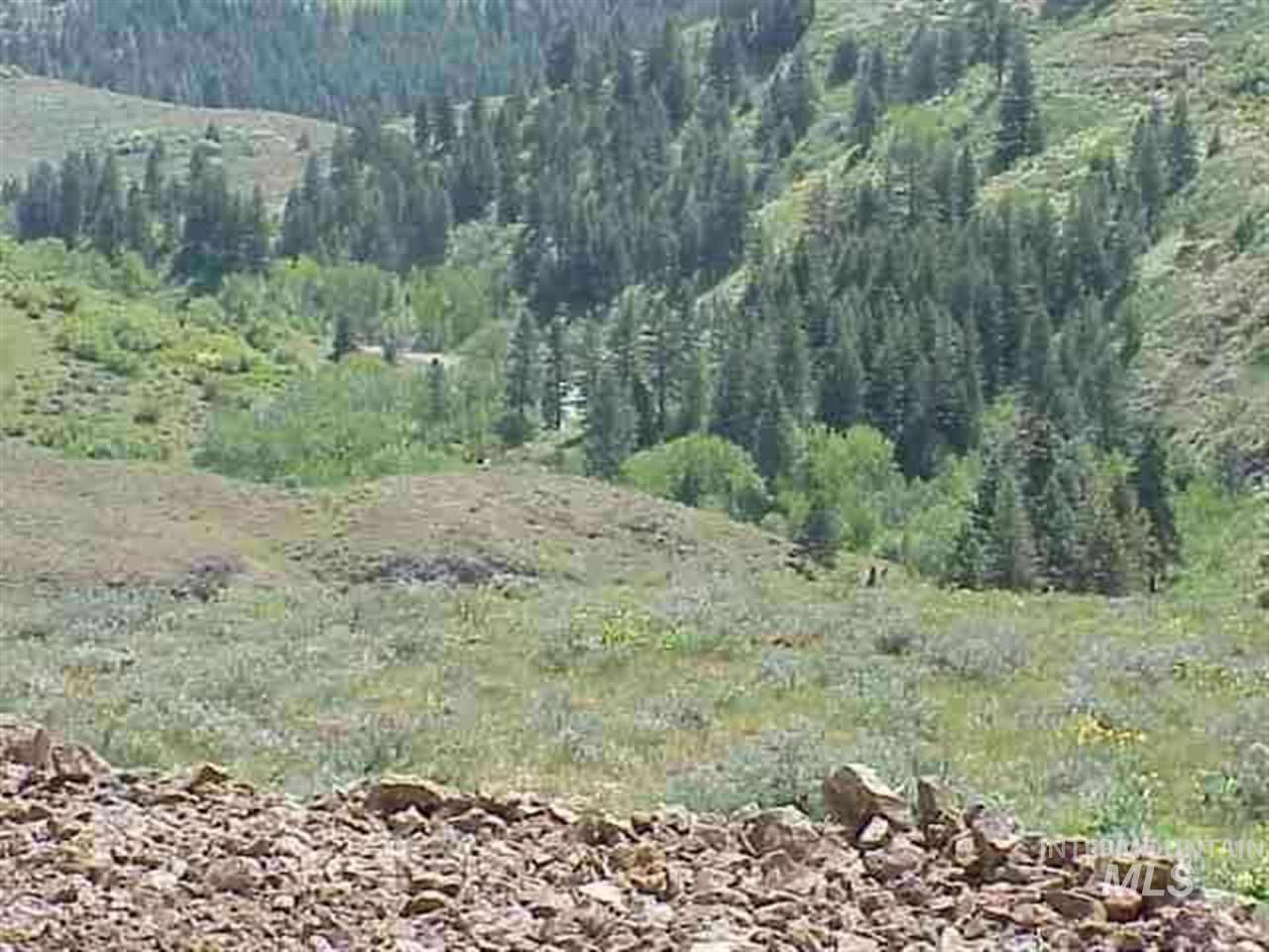Lot 4 Middle Fork Rd, Council, Idaho 83612, Land For Sale, Price $891,000, 98682709