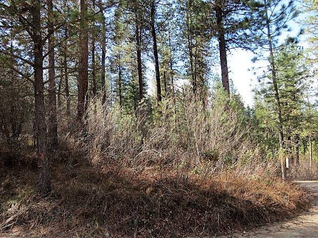 Lot 23 Valley High Rd., Garden Valley, Idaho 83622, Land For Sale, Price $35,000, 98685389