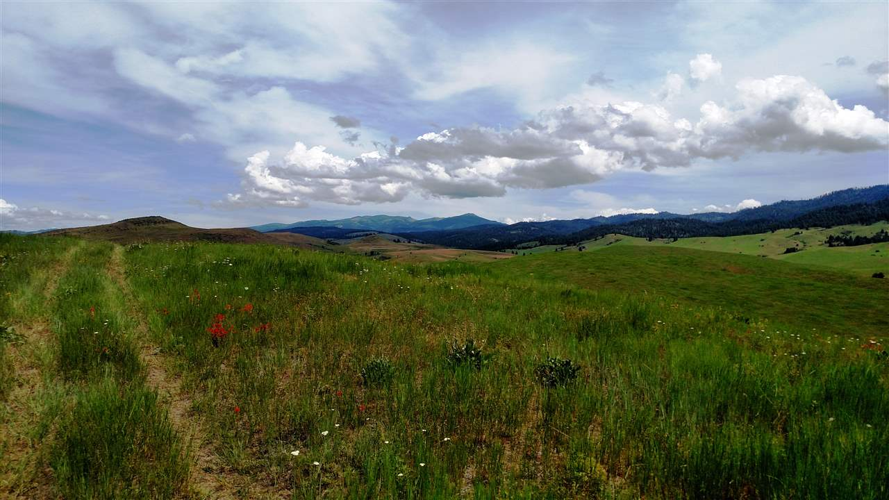 TBD Third Fork Road, Ola, Idaho 83657, Farm & Ranch For Sale, Price $3,724,000, 98707265