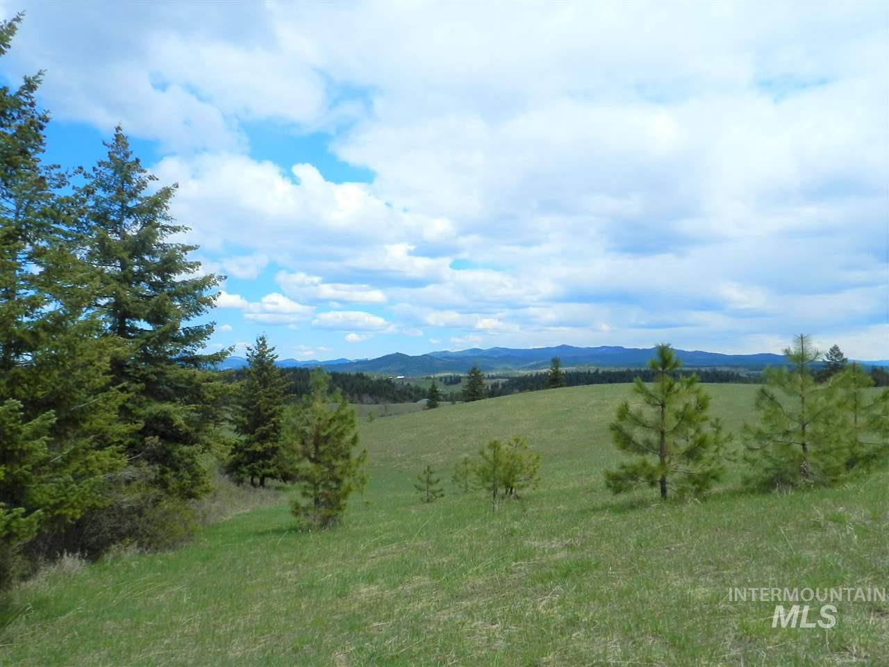 NNA Grange Park Road Parcel #4, Princeton, Idaho 83857, Land For Sale, Price $275,000, 98718532