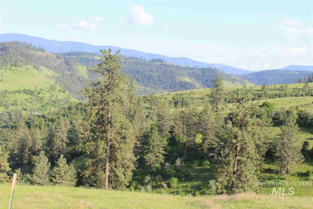 TBD Lot 1 Old Lamb Grade, Stites, Idaho 83552-000, Land For Sale, Price $185,000, 98724598