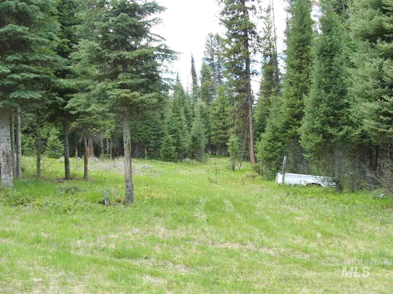 TBD Hidden Springs Road, Elk City, ID 83525
