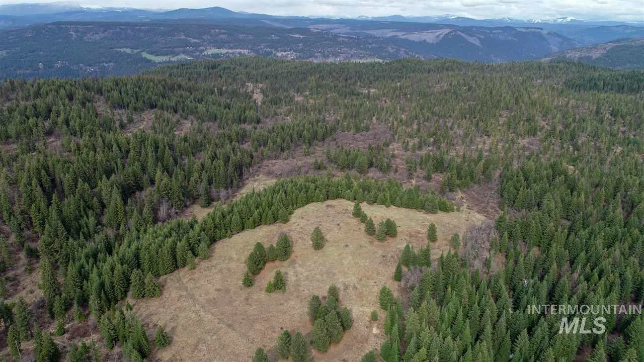 000 Loseth Road, Orofino, Idaho 83544, Land For Sale, Price $280,000, 98725491