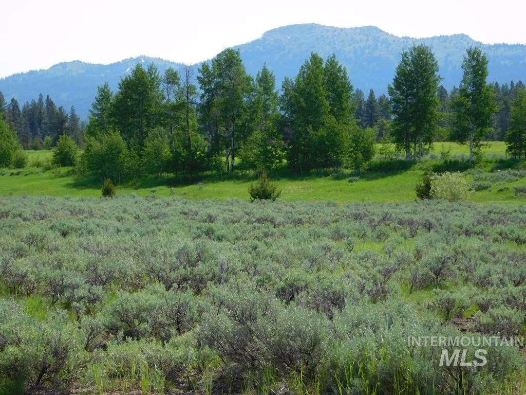 13804 Raptor Loop, McCall, Idaho 83638, Land For Sale, Price $56,900, 98725547