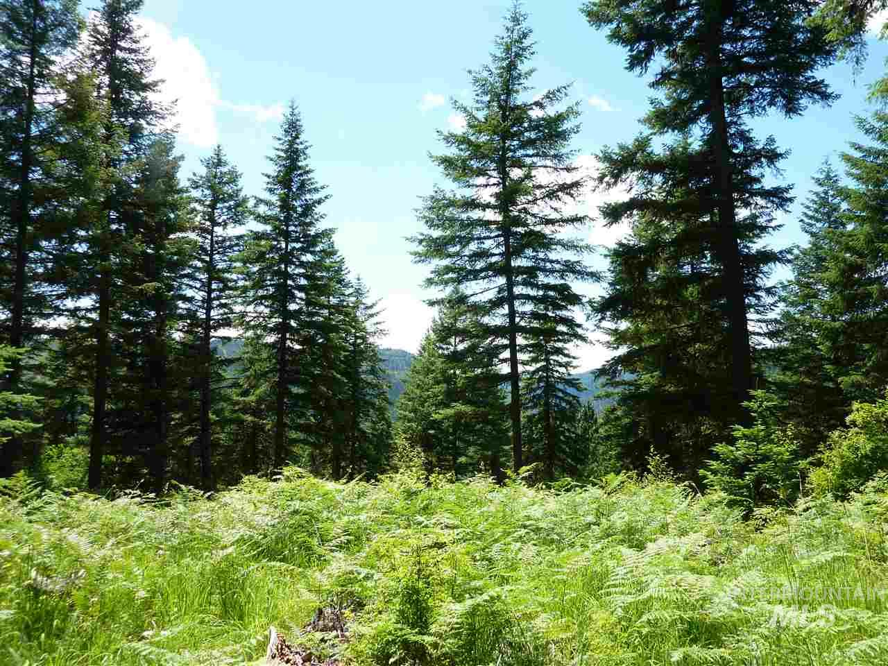 TBD RACOON LANE, Orofino, Idaho 83544-9999, Land For Sale, Price $47,500, 98725667