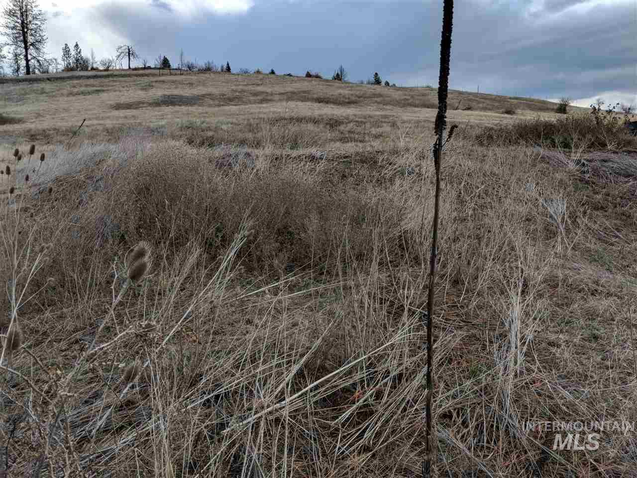 295 N Glenwood Rd, Kamiah, Idaho 83536, Land For Sale, Price $95,900, 98725912