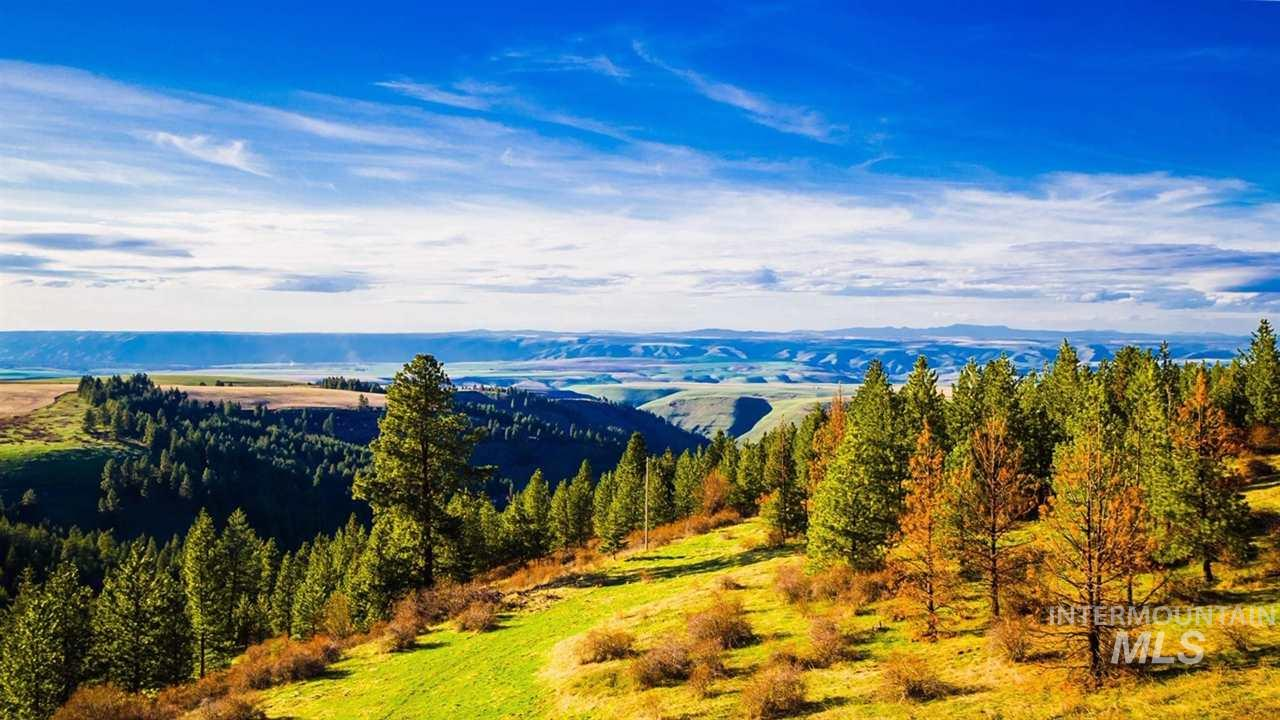 TBD Country Rose Lane, Lapwai, Idaho 83540-0000, Land For Sale, Price $47,700, 98726131