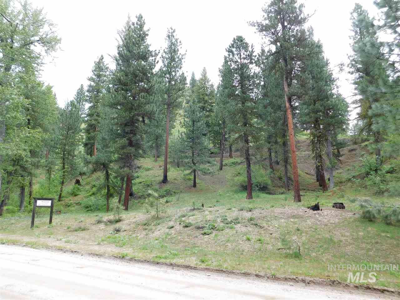 TAX 24 LESS TAX 26 SEC 9 T3N R10E, Featherville, Idaho 83647, Land For Sale, Price $150,000, 98731006