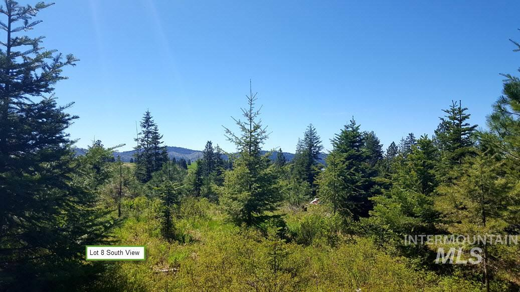 TBD Clark Valley Court, Weippe, Idaho 83553, Land For Sale, Price $15,900, 98731191