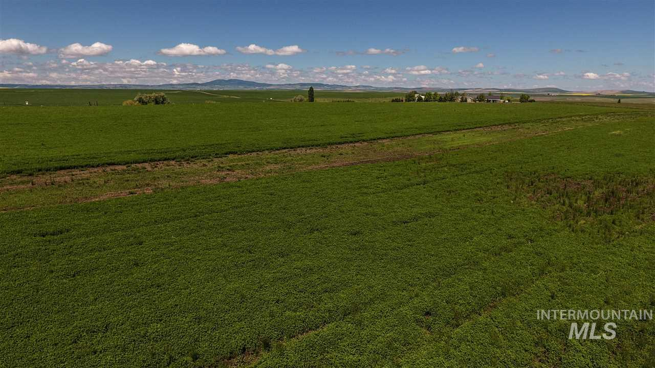 TBD Halford Road, Grangeville, Idaho 83530, Land For Sale, Price $150,000, 98731247