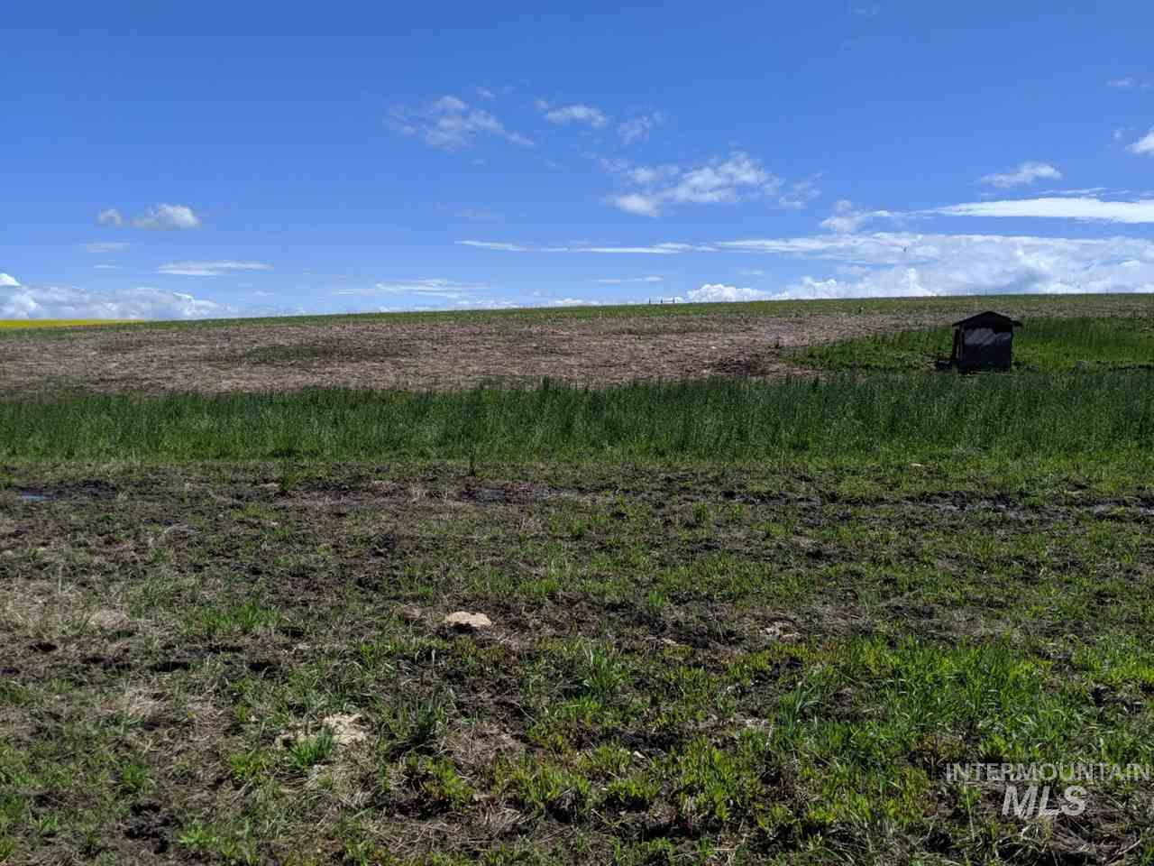 TBD Halford Road, Grangeville, Idaho 83530, Land For Sale, Price $89,000, 98731265