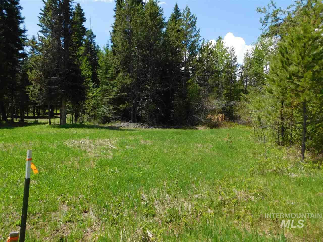243 Ernesto Dr, McCall, Idaho 83638, Land For Sale, Price $92,000, 98731447