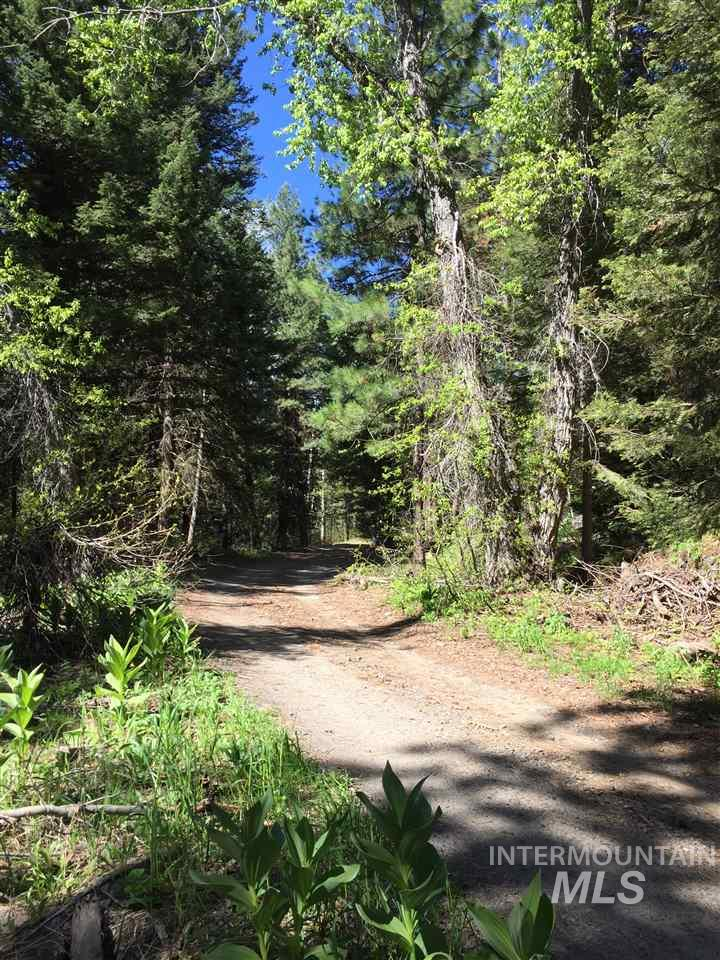 0 Northwest End of Meadow Road, McCall, Idaho 83638, Land For Sale, Price $197,500, 98731485