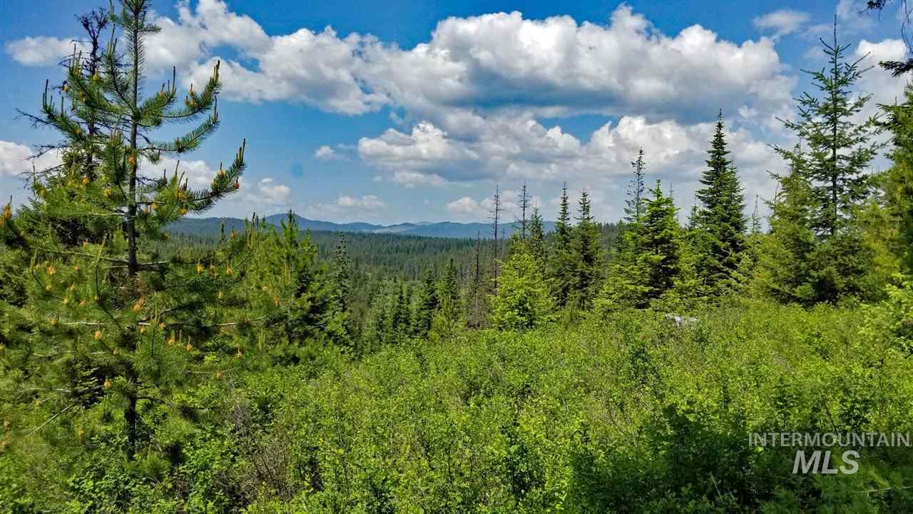 TBD Hwy 3, Bovill, Idaho 83806, Land For Sale, Price $194,900, 98731624