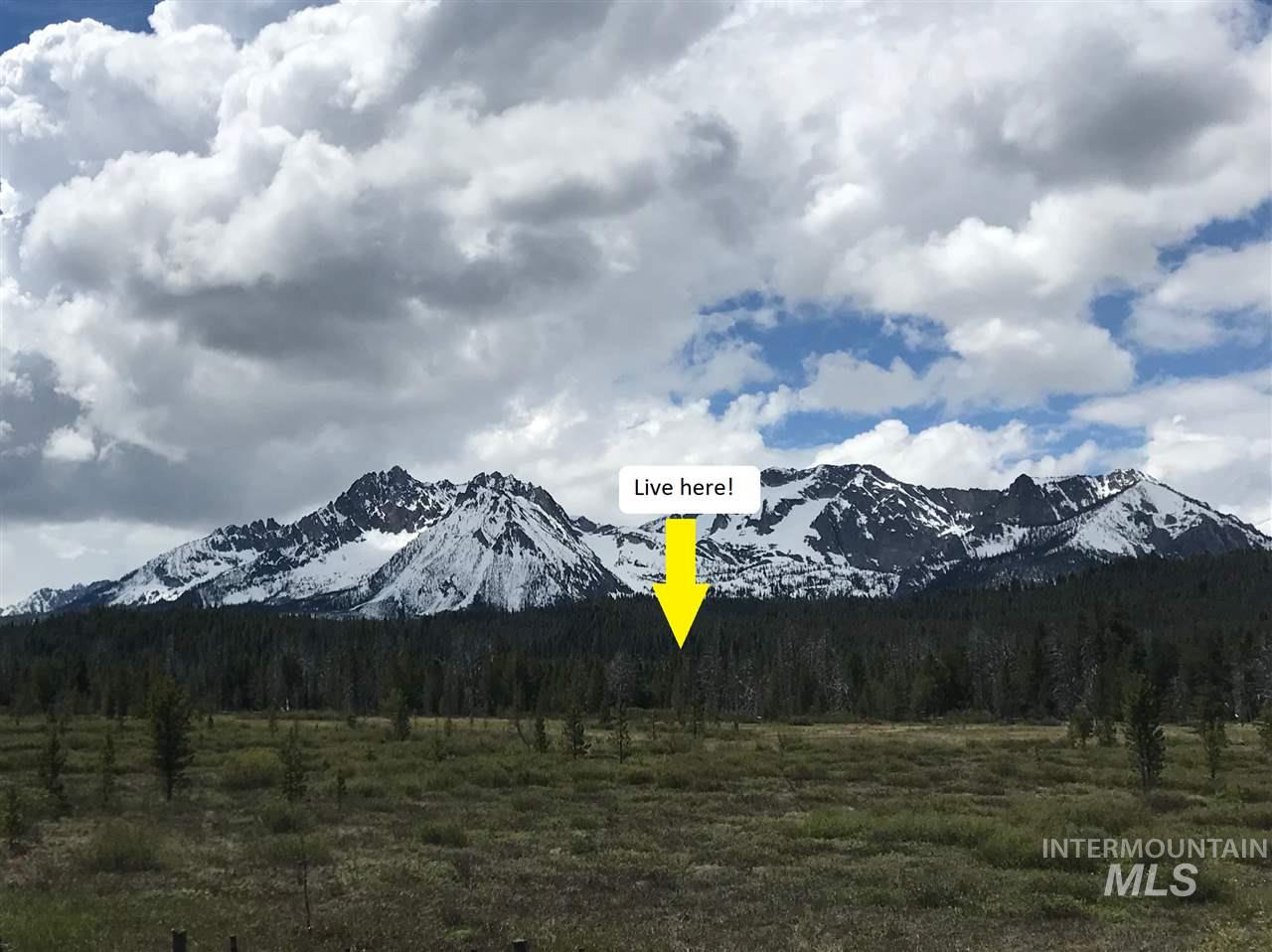 Lot 4 Stanley Basin Subdivision, Stanley, ID 83278