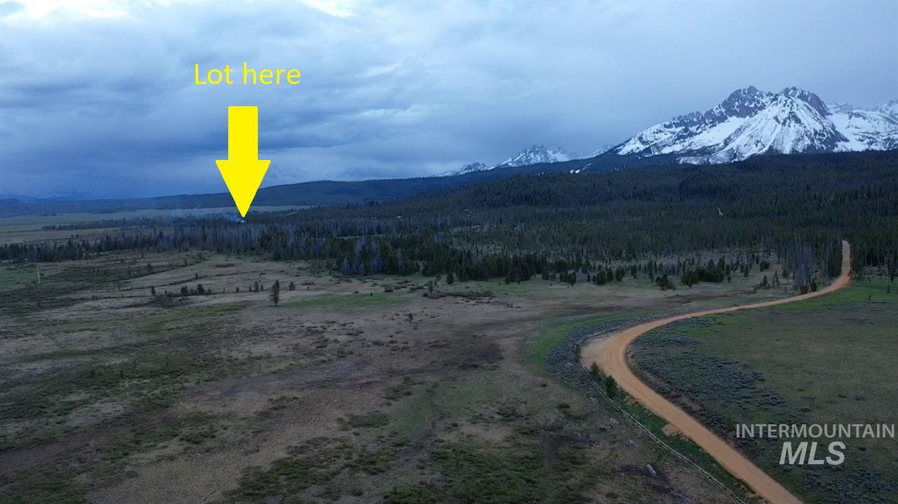 Lot 5 Stanley Basin Subdivision, Stanley, ID 83278