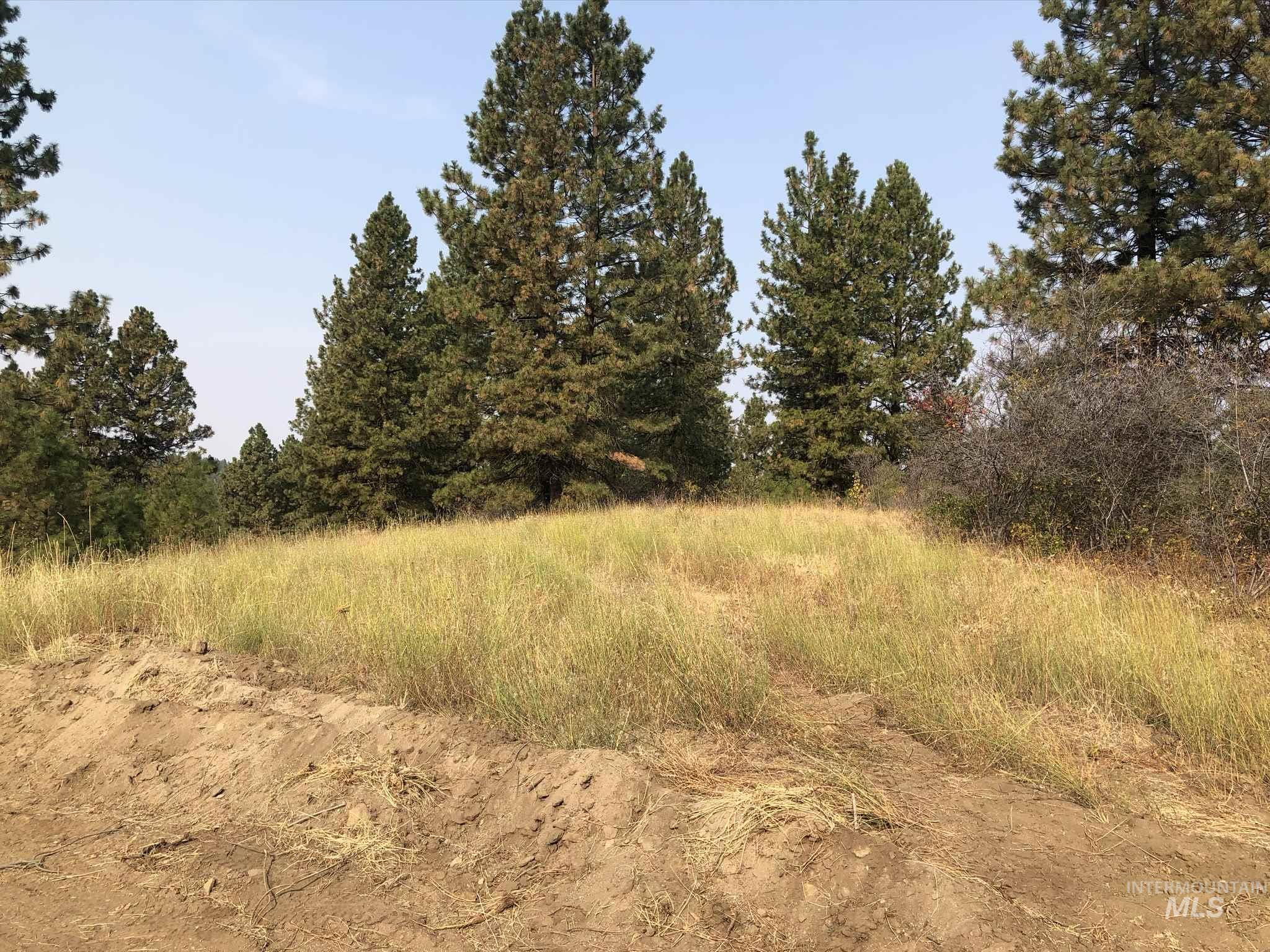 TBD Lot 20 Outlaw Trail, Banks, Idaho 83602, Land For Sale, Price $75,000, 98783748