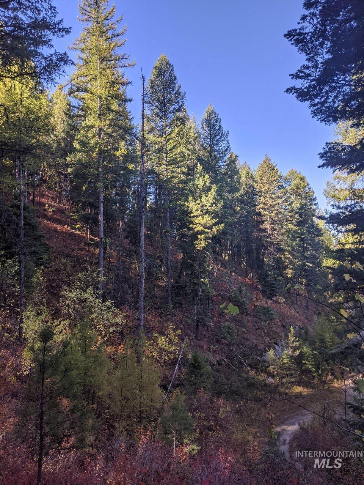 TBD 31B Mountain Air Dr., Cascade, Idaho 83611, Land For Sale, Price $60,000, 98784327