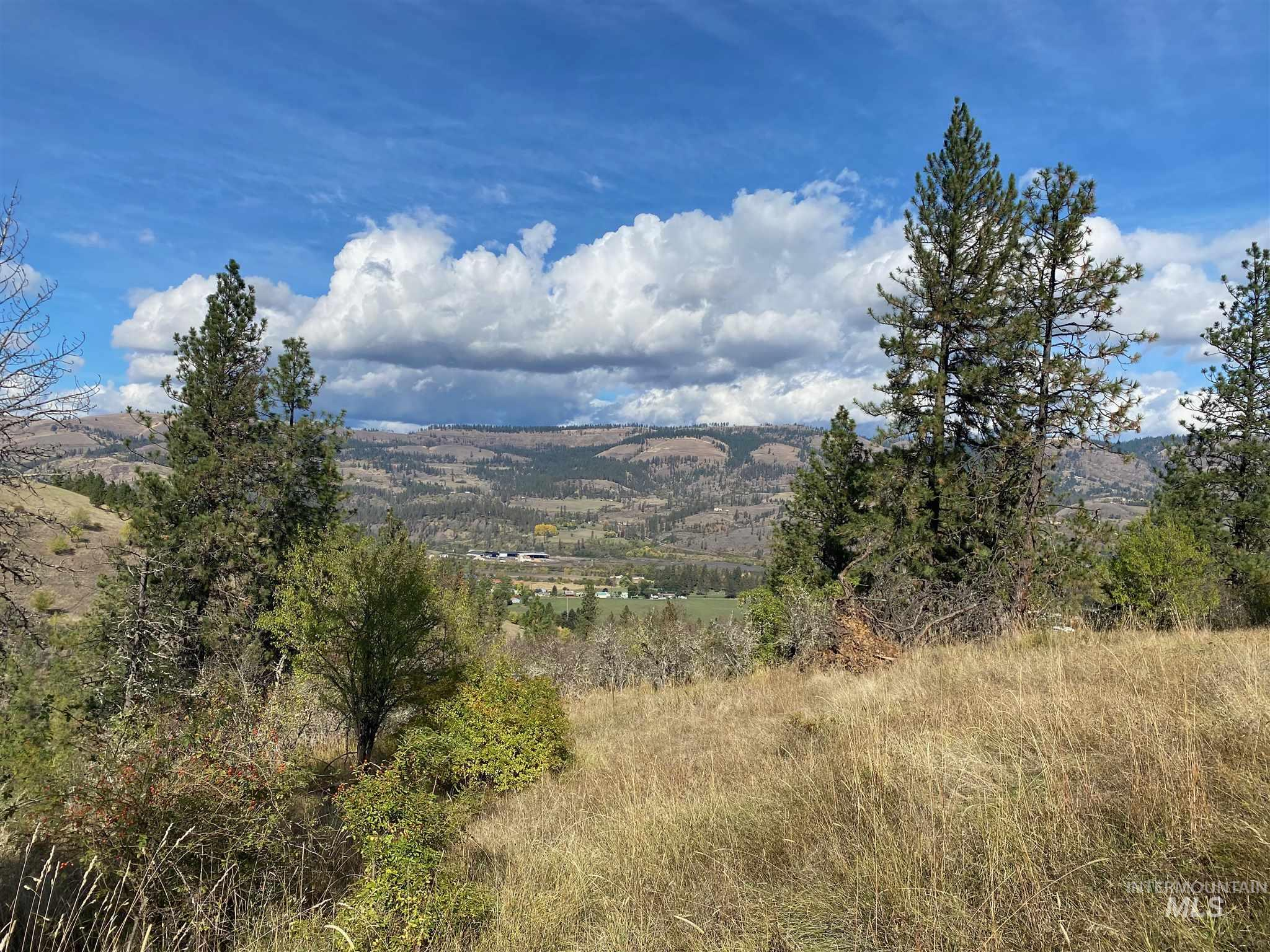 TBD Crest Dr, Kamiah, Idaho 83536, Land For Sale, Price $78,900, 98784483