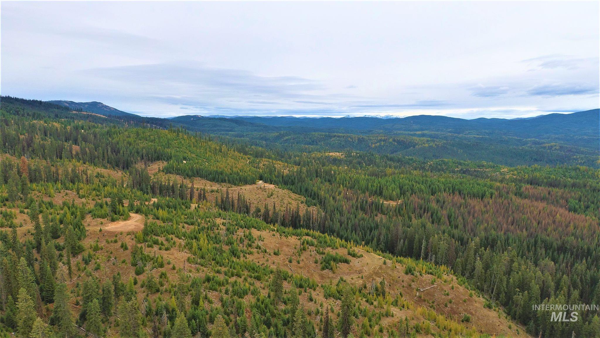 TBD Elk Summit Properties Parcel 4, Elk City, ID 83525
