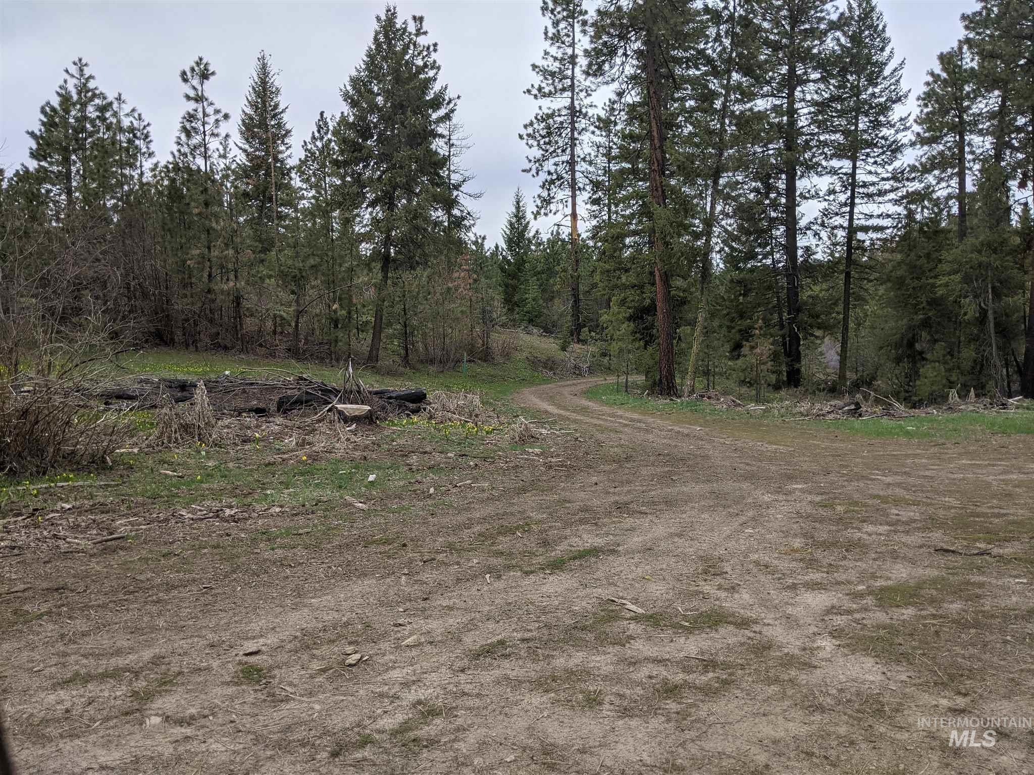 160+/- Acre parcel may be dividable into 40+/- acre parcels. Buyer to determin terms and conditions required to split property if desired.