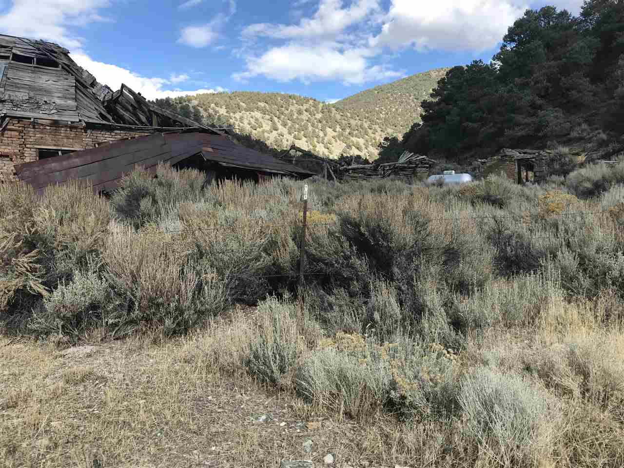 Additional photo for property listing at Johnson Canyon Austin, Nevada 89310 United States
