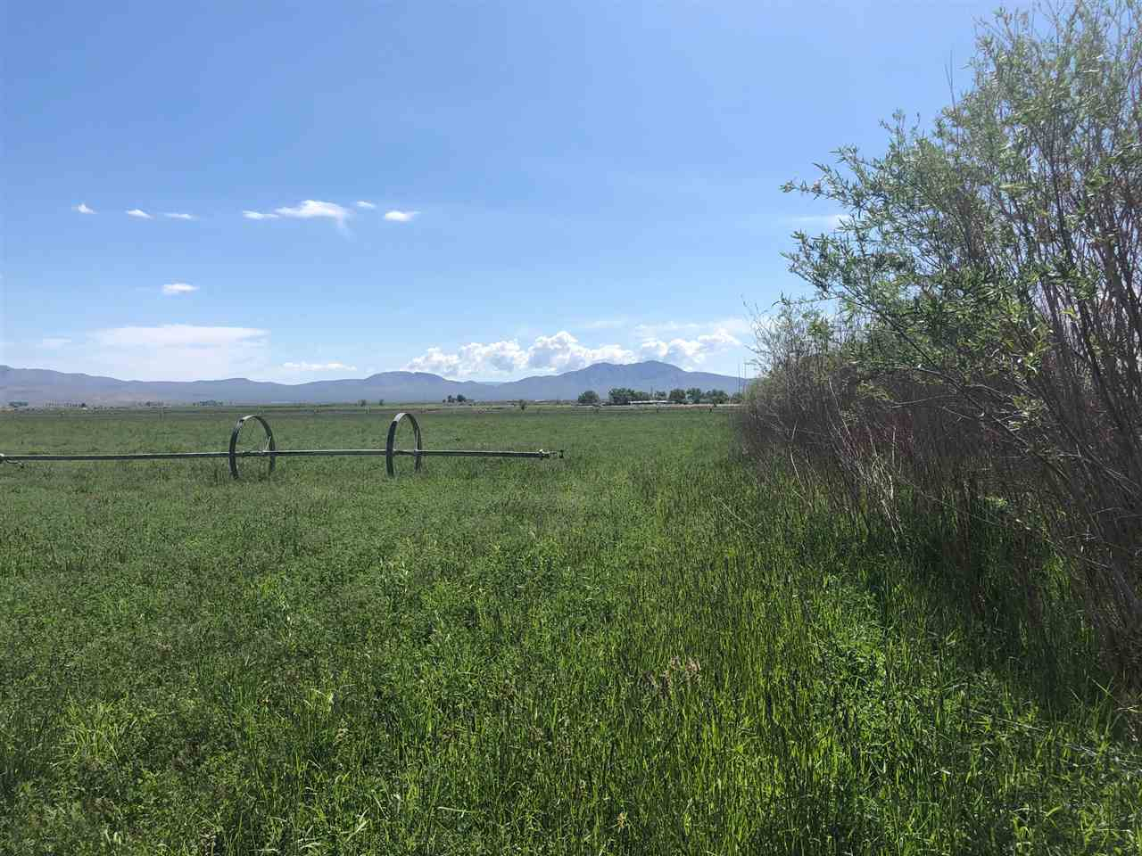 Additional photo for property listing at 47 Burke & Lower Colony/Day Lane Smith, Nevada 89430 Estados Unidos