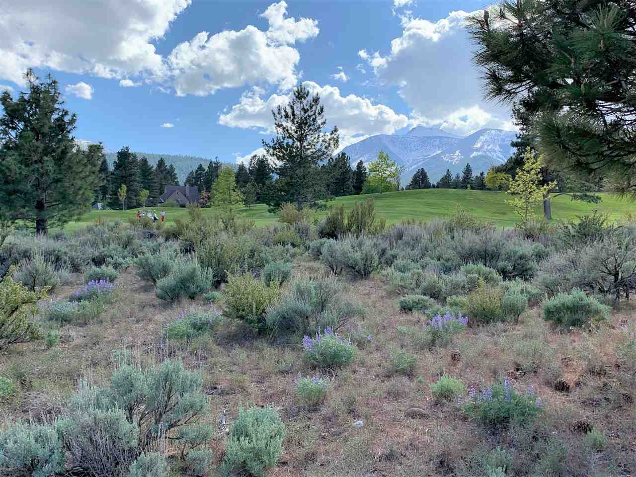 Land for Active at 6615 Gebser Court Reno, Nevada 89511 United States