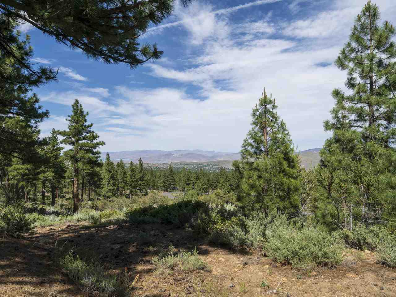 Land for Active at Abies Road Reno, Nevada 89511 United States