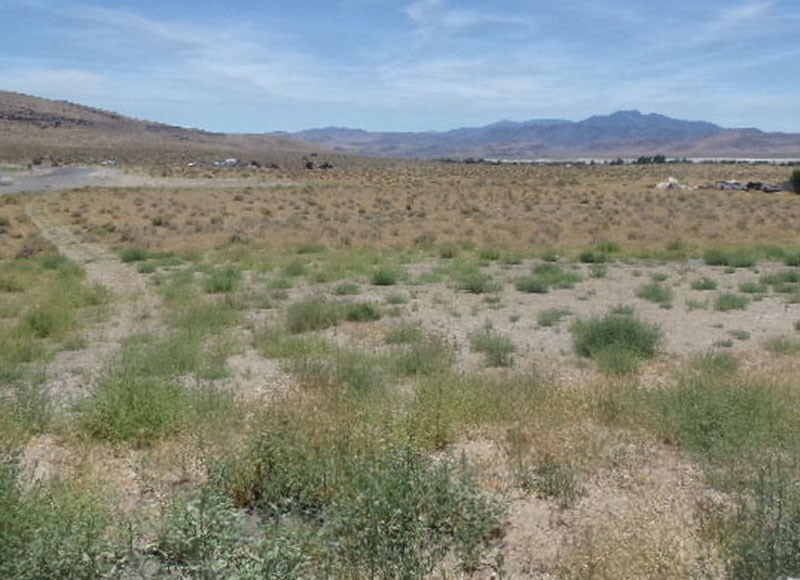 Land for Active at Stagecoach Dr Par 4 Stagecoach, Nevada 89429 United States