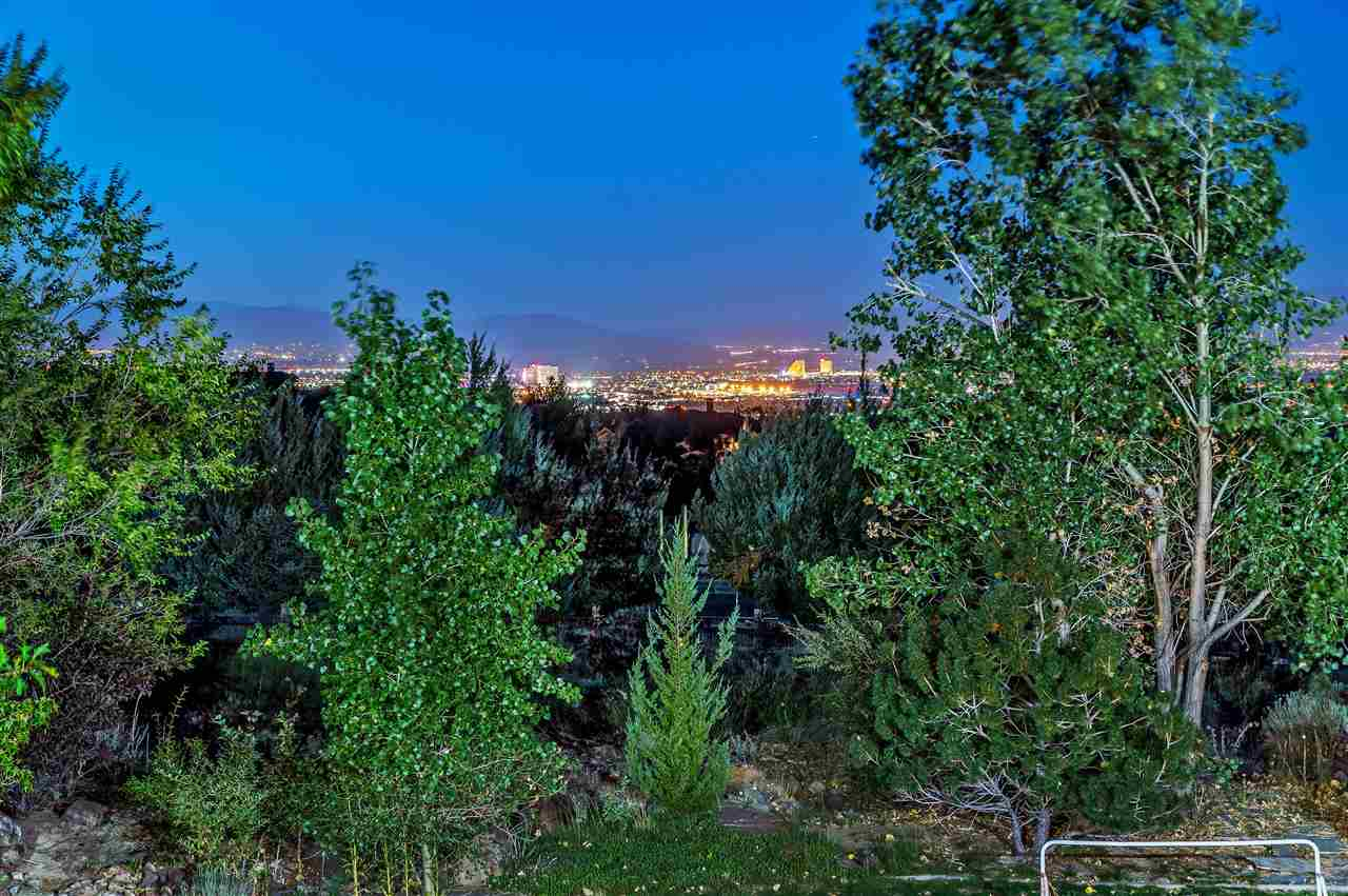 Additional photo for property listing at 10141 Indian Ridge Reno, Nevada 89511 Estados Unidos